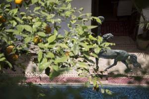 Enjoy the pool at Riad El Zohar